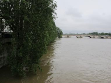 Urban rivers: pleasure or danger