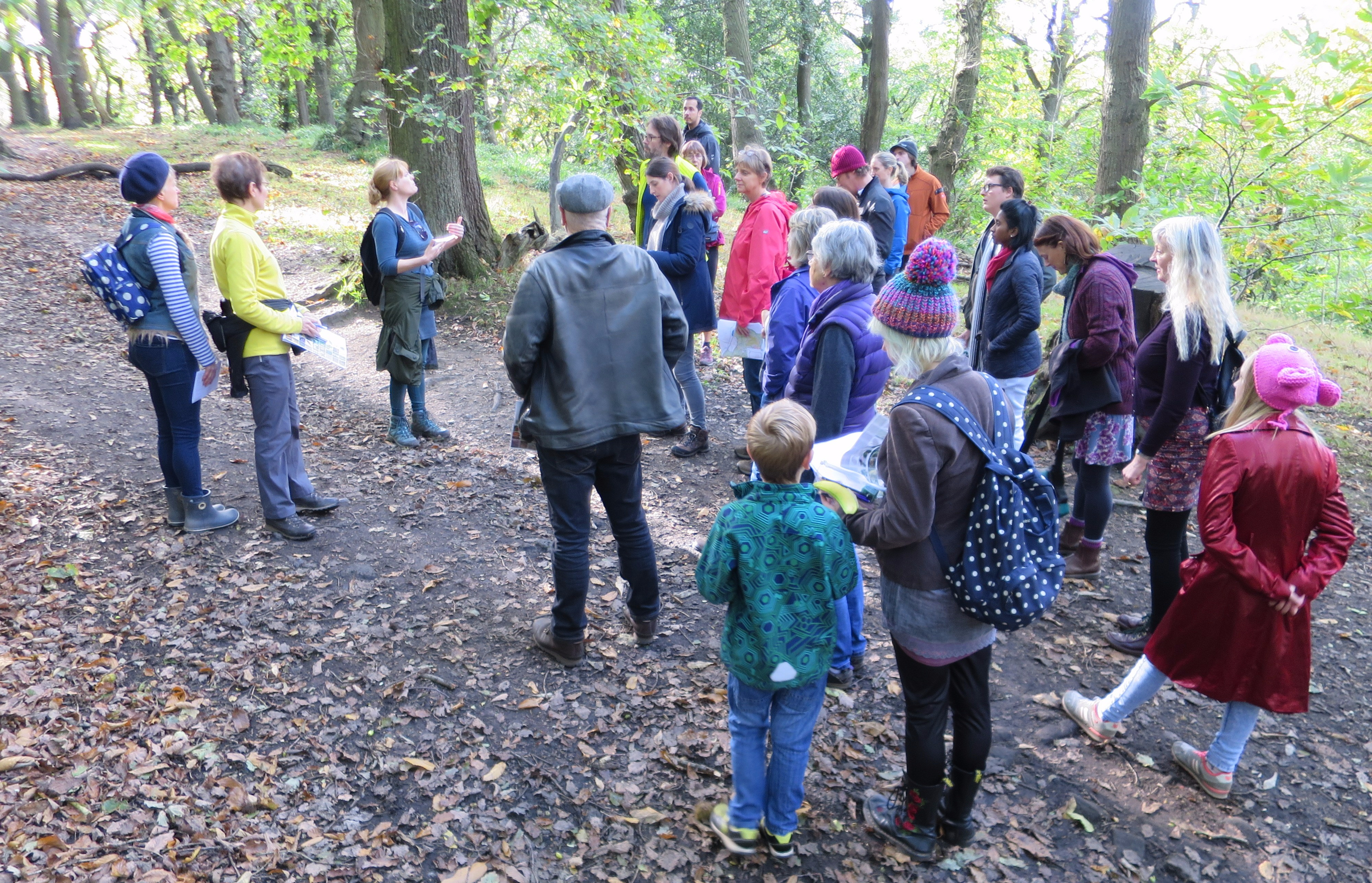 sheffield-woodland-connections-img_2804.jpg